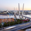 Panorama of evening Vladivostok. Golden bridge. Russia — Stock Photo #42803285