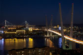 Panorama of night Vladivostok. Golden bridge. Russia — Stok fotoğraf