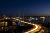 Panorama of night Vladivostok. Golden bridge. Russia — Stock Photo
