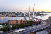 Panorama of evening Vladivostok. Golden bridge. Russia — Stock Photo