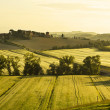 Italy. Tuscany. Rural landscape at dawn — Stock Photo