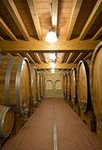A antiga adega de vinhos — Fotografia Stock