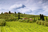 Rural landscape of Tuscany. Italy — Stock Photo