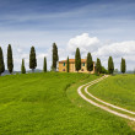 Постер, плакат: Rural house with cypress trees around Tuscany Italy