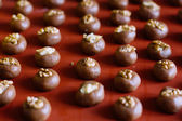 Chocolate cookies with walnut — Zdjęcie stockowe