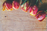 Tulip bouquet on wood board with free space — ストック写真