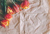 Tulip bouquet on craft paper with free space — Foto Stock