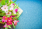 Alstroemeria bouquet on blue background — Stock fotografie
