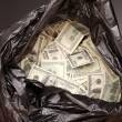 Rubbish bag with dollars	 — Stock Photo