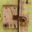 Foto Stock: Old door background
