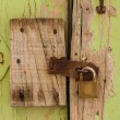 Stockfoto: Old door background