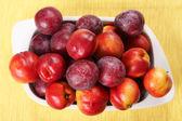 Fruits — Zdjęcie stockowe