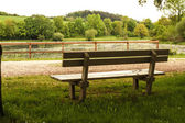 Bench in the woods — Stockfoto