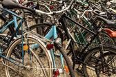 Viele fahrräder — Stockfoto