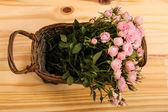 Růže v košíku — Stock fotografie