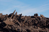Volcanic landscape in Lanzarote — Stock Photo