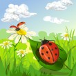 Summer landscape with ladybug — Stock Vector