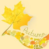 Abstract background with autumn maple leaf — Stock Vector