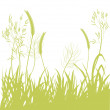Stock Vector: Background silhouette of motley grass