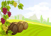 Grapes, barrels and rural landscape — Stock Vector