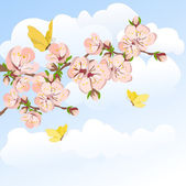 Blooming apricot and sky — Stok Vektör