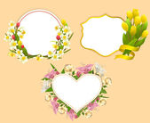 Set of frame with flowers — Stock Vector