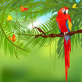 Rainforest and parrot — Stok Vektör