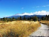 Mount Shasta, California USA — Stock Photo
