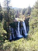 Burney Falls, Mount Shasta area, California USA — Stock Photo