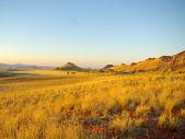 Namib rand at sunset — Stock Photo