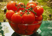 Tomatoes in a vase — Stock Photo