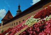 Lvov, flower clock. — Stock Photo