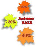 Autumn discount — Stock Vector