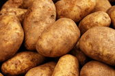 Russet Potatoes Close Up — Stock Photo