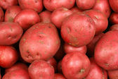 Red Potatoes Close Up — Stock Photo