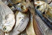 Solone, suszone ryby — Zdjęcie stockowe