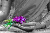 Orchid in hand image of buddha — Stock Photo