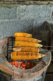 Grilled corn on the hot stove — Stock Photo