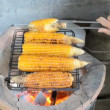 Grilled Corn — Stock Video