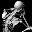 Stock Photo: 3d rendered white skeleton