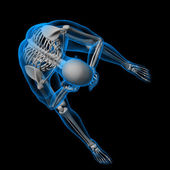 3d render white skeleton of a sitting - top view — Stock Photo
