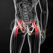 3d rendered, medical illustration of a painful hip joint - back view — Stock Photo