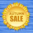 Beautiful autumn sale frame with yellow leaves — Stock Vector #32134209