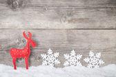рождественский северный олень — Стоковое фото