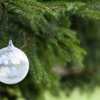 Pine tree and white buble — Stock Photo