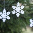 Snoflake decoration on pine tree — Stock Photo #35249305