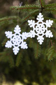Snoflake decoration on the pine tree — Stock Photo