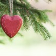 Red wooden Heart with Pine tree — Stock Photo #35255315