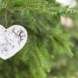 White wooden Heart with Pine tree — Stock fotografie