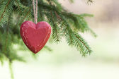 Red wooden Heart with Pine tree — Stok fotoğraf